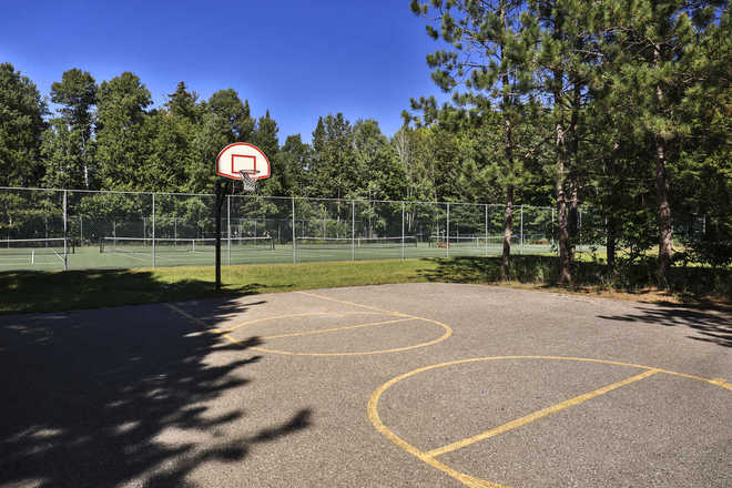 Trout Creek Condominiums Basketball Court